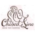 Chesvet Line logo