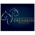 Dreamkiss logo