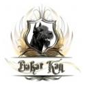 Бакар Кан logo