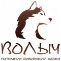 Волыч logo