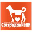 СостраданиеНН logo