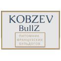 KOBZEVBULLZ logo