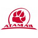 Атаман logo
