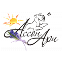 Ассон Ари logo