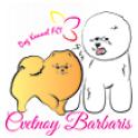 Цветной Барбарис logo