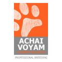 Achai Voyam logo