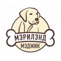 Мэрилэнд Мэджик logo