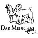 Dar Medichi logo