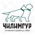 Чилимгур logo