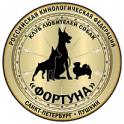 """СПб РОО КЛС """"Фортуна"""" logo"""