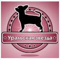 Уральская Звезда logo