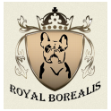 Royal Borealis logo
