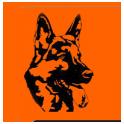 Аксельбруннер logo