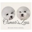 Osmar's Zeus logo